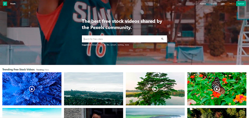 ilmaisia videoita | pexels